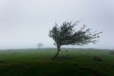 Sturm und Wind
